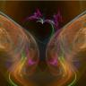 Daedalus Imagery